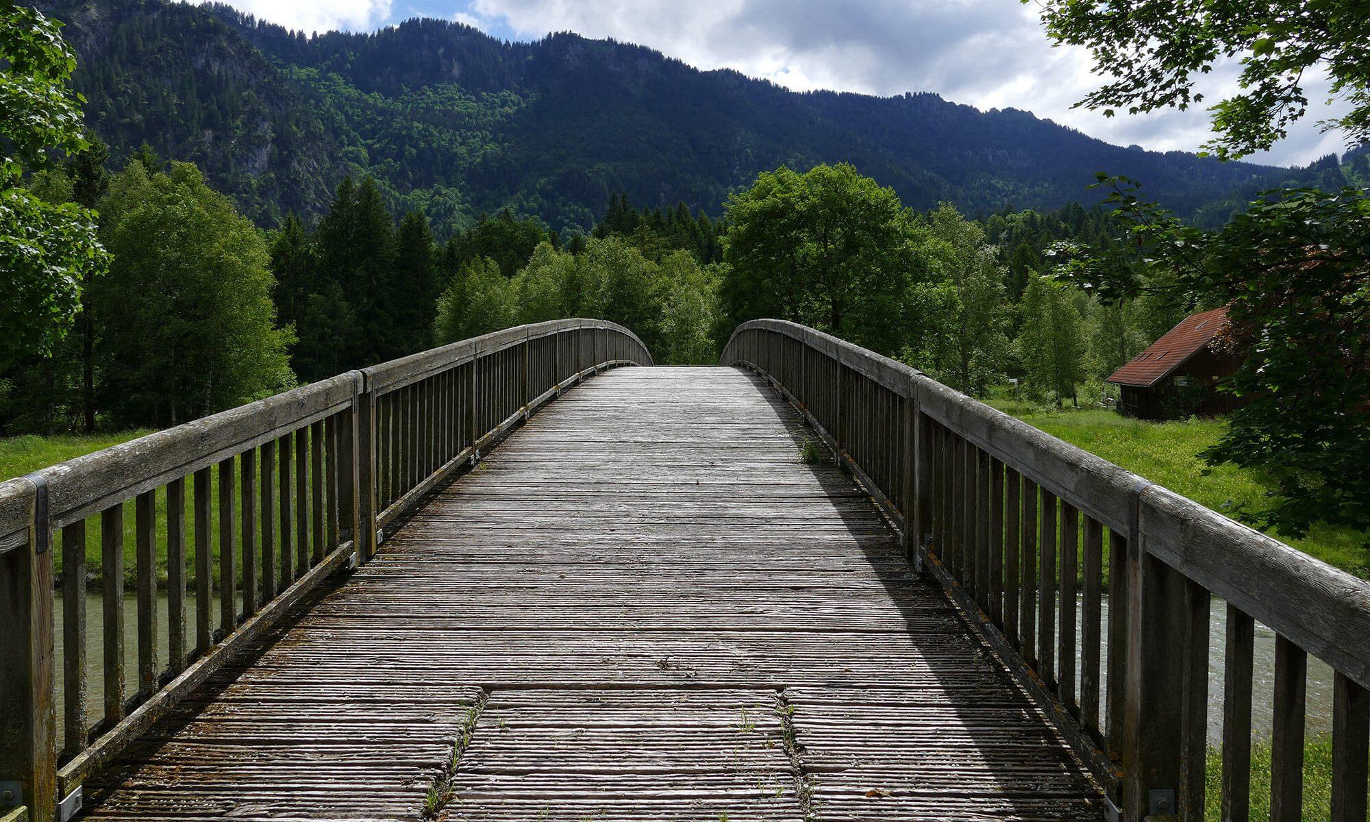 A bridge going over a creek into a meadow.